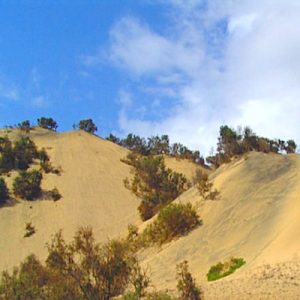 Morrinho Sand Dunes