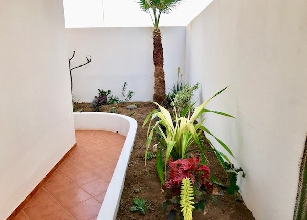 Garden of property for sale on Sal