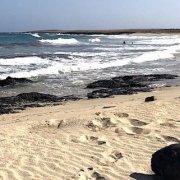 Praia Gonçalo, Maio